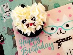 Ali's Birthday Cupcakes